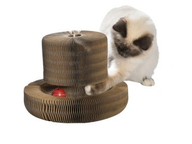 GRIFFOIR OPTIMUS POUR CHAT