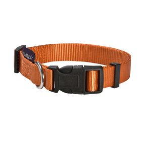 collier ACCESS orange Bobby pour chien