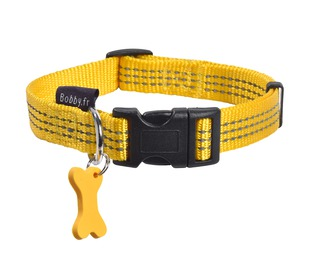 collier SAFE jaune chien Bobby