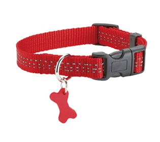 collier SAFE rouge chien Bobby