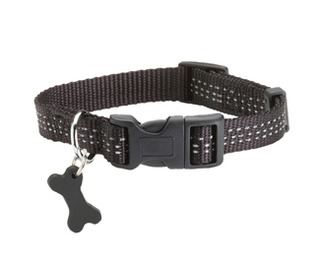 collier Safe marron chien Bobby