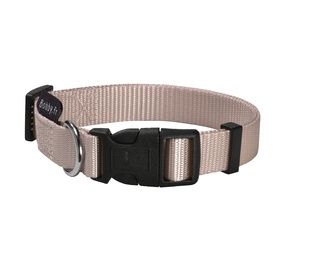 collier taupe pour chien Bobby