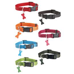 colliers safe assortiment couleur pour chien