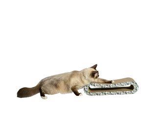 griffoir PANAMA pour chats