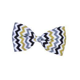 noeud papillon zigzag bobby pour chien