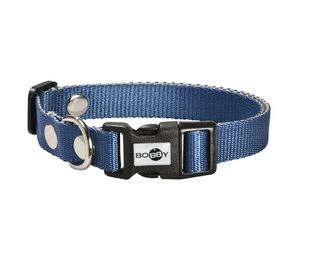 collier spotted pour chien bobby mode