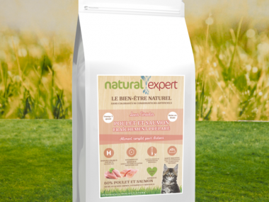 croquettes-chaton_natural-expert-phyto-véto-600x