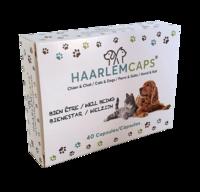 photo_haarlem-capsules-pour-chien-et-chat_200x