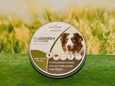 collier anti parasites chien taille moyenne ProGuard natural expert