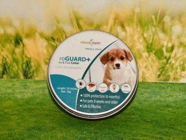 collier-anti-puces-bio-petit-chien-natural-expert_600x