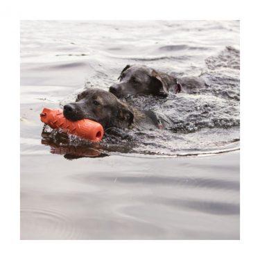 jouet-flottant-pour-chien