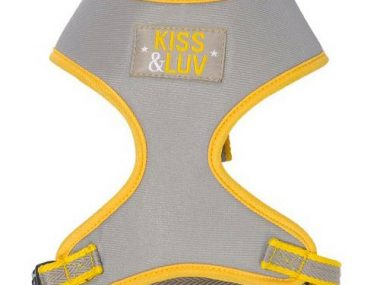 chiens-bobby-harnais-t-shirt-cute-jaune