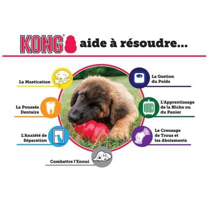 Kong rouge pour chien naturel